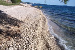 beach-petrcan-kozino